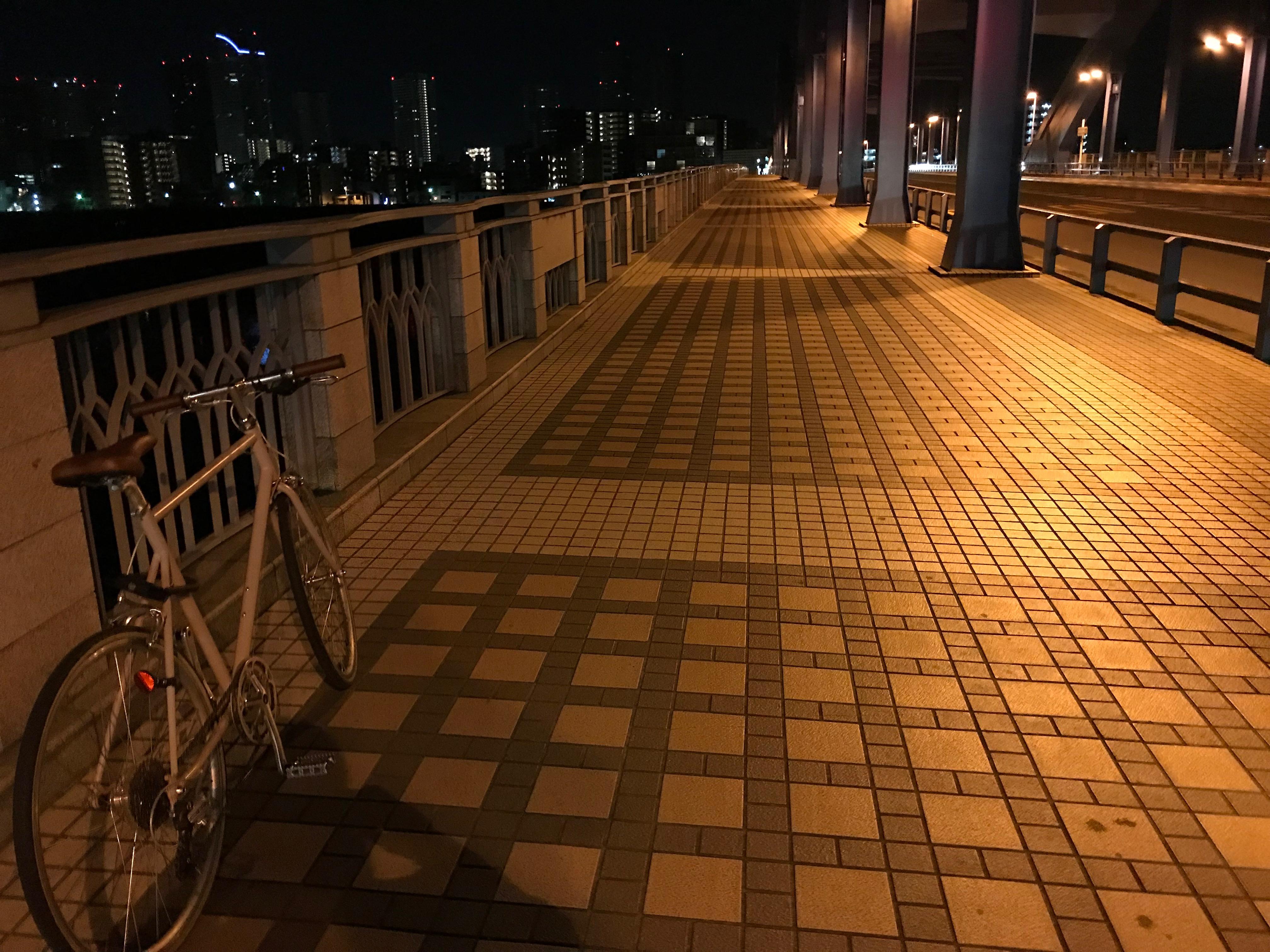 夜の多摩川