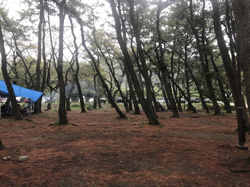 上大島キャンプ場 (35)